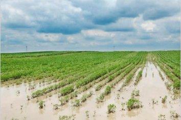 Los caminos rurales que permanecen cortados por las lluvias