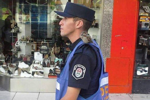 Recibió un apercibimiento el policía que alimentaba un gorrión en la peatonal