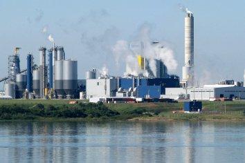 Piden el Gobierno nacional que informe si una nueva pastera se instalará frente al Río Uruguay