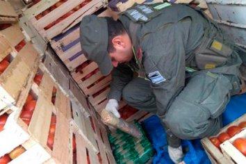 Incautaron mas de 400 kilos de cocaína oculta entre tomates