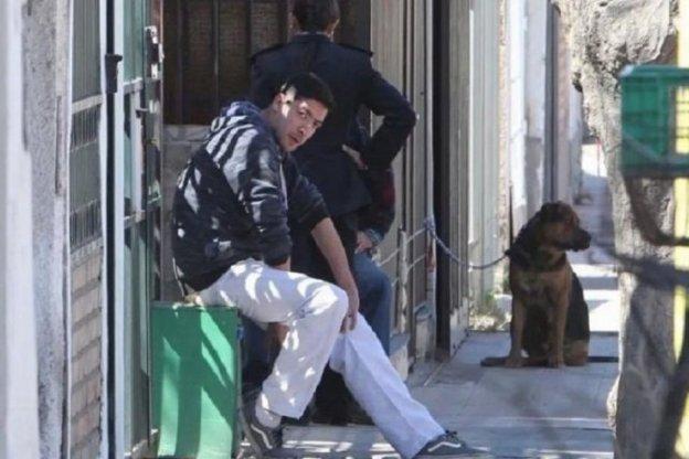 Un perro le arrancó el brazo y mató a su dueña, de 91 años