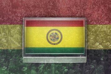 Sobre la OEA y las elecciones en Bolivia