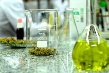 La Corte Suprema ordenó a obra social cubrir tratamiento con aceite de cannabis