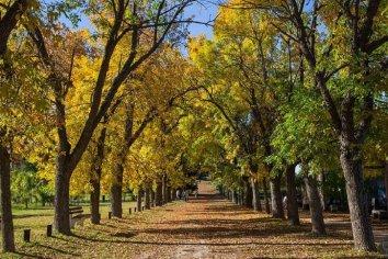 Desde Octubre reabren los parques nacionales en Argentina