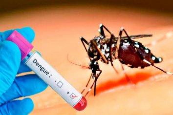 Son 38 mil los casos de dengue en todo el país