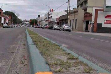 Polémica por el color verde en canteros centrales de concurridas avenidas