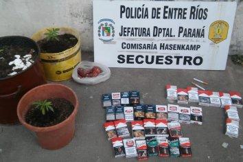 Fueron en búsqueda de elementos robados: hallaron 35 paquetes de cigarrillos y tres plantas de Cannabis
