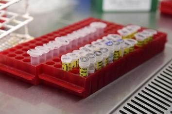 Revelan que retrasar la segunda dosis de la vacuna aumenta la inmunización