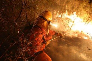 """""""El Derecho obliga a los Estados a cuidar el planeta"""", sostuvieron sobre los incendios en el Delta"""