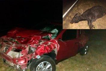 Chocó contra un animal de gran tamaño en la ruta y su vehículo sufrió grandes daños