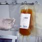 Gualeguaychú comenzó con la transfusión de plasma a adultos mayores