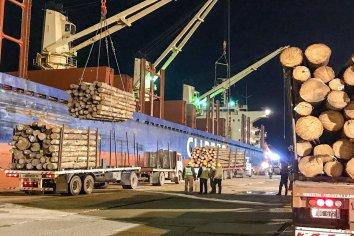 Exportaciones entrerrianas llegan a más de 130 mercados en el mundo
