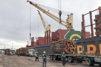 Los puertos entrerrianos continúan en plena actividad