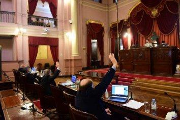 Lucha histórica: Diputados dará media sanción al proyecto de