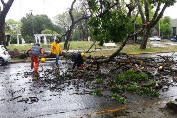 El municipio intervino ante las intensas lluvias