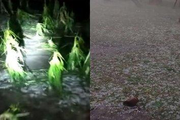 Fuertes mangas de granizo afectaron a algunos sectores de Entre Ríos