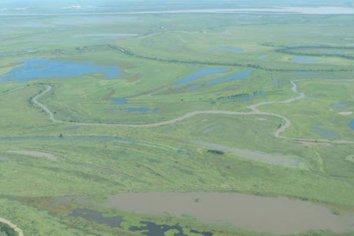 La Justicia Federal prohibió el uso de agroquímicos en 250.000 hectáreas de islas