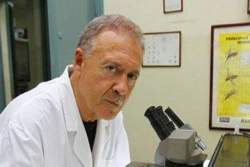 """El infectólogo asesor del Gobierno Hugo Pizzi adelantó cuándo será el regreso a """"la normalidad"""""""