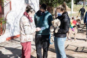 La Municipalidad dispuso un nuevo punto fijo de Salud y Bienestar Animal